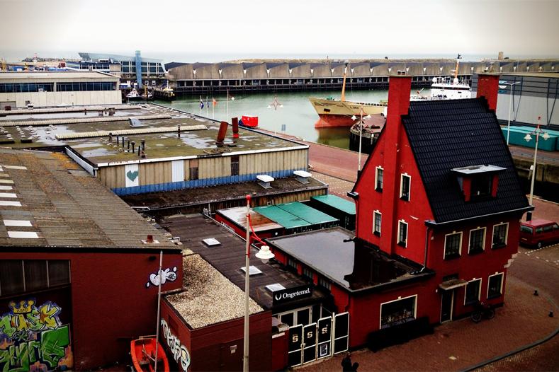 Re-act is gevestigd in het rode huisje aan de Scheveningse haven (foto: Filip Mens)